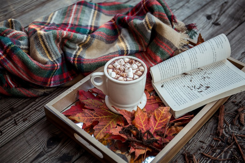 Hot chocolate, a blanket and a book