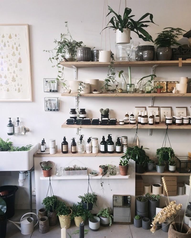 Interior design trends - plants
